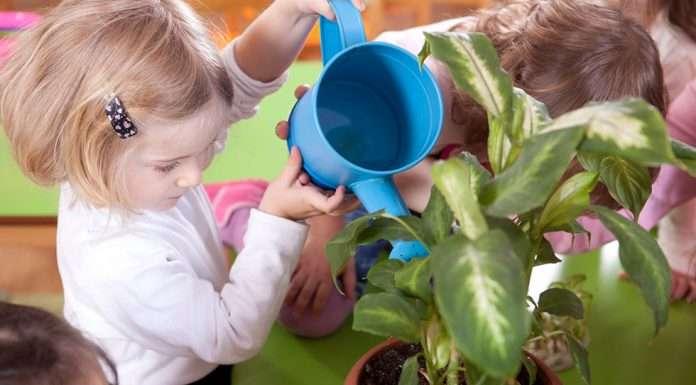 Lapsi kastelee kasvia