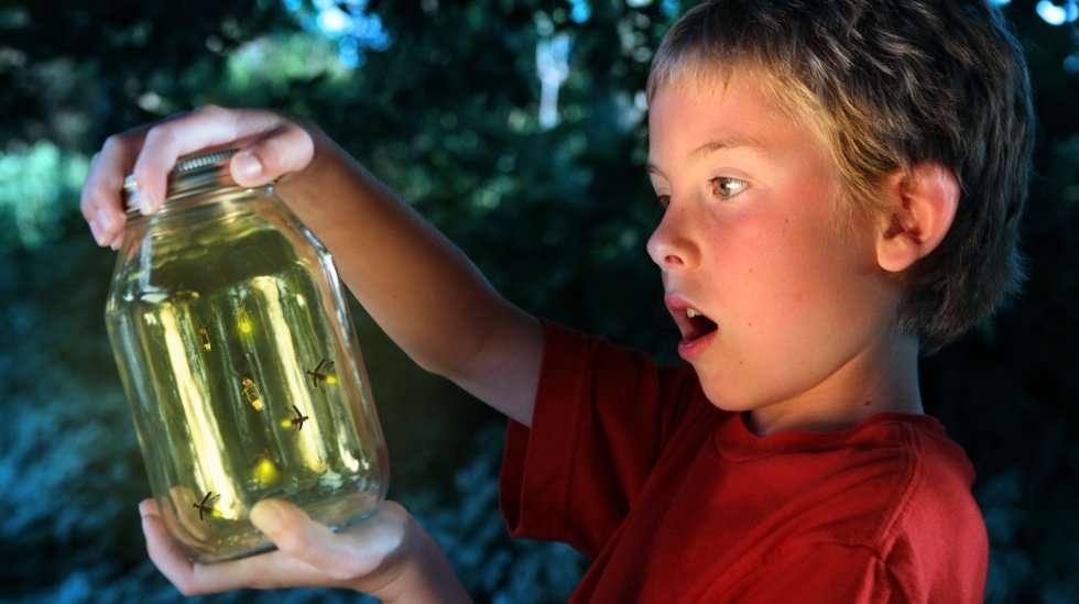 Skorpionilapsi on utelias. (Kuva: Shutterstock)