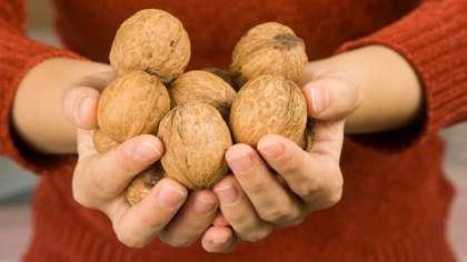 Saksanpähkinöitä