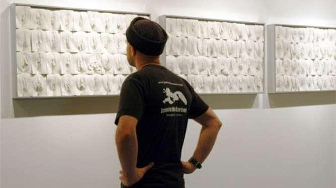 Jamie McCartney koosti taideteoksen satojen tavallisten naisten ulkosynnyttimien kipsivaloksista.
