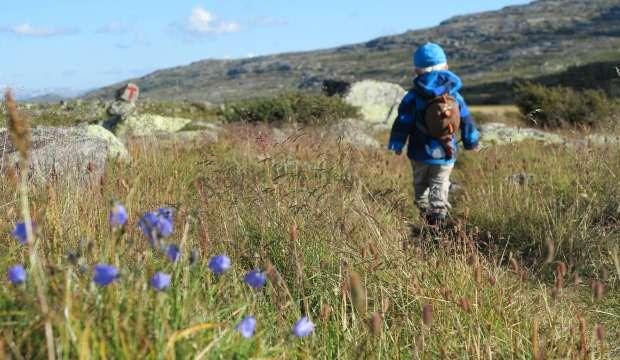 Tristan vaeltaa Bergenissä, Norjassa.