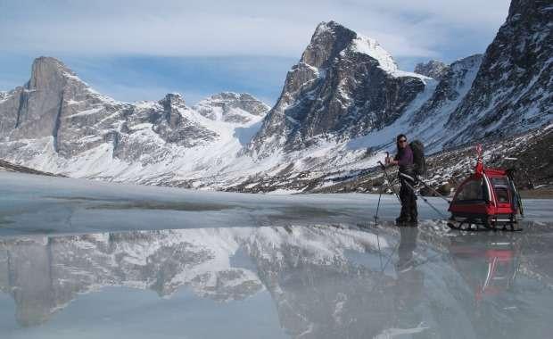 Homma hoituu kätevästi jalaksilla varustetulla kärryllä. Baffininsaarella, Pohjois-Kanadassa vuonna 2012.
