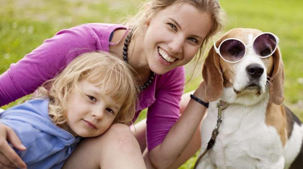 Vasemmalta oikealle: Musti-tyttö, Haukku-äiti ja Onni-koira. (Kuva: Shutterstock)