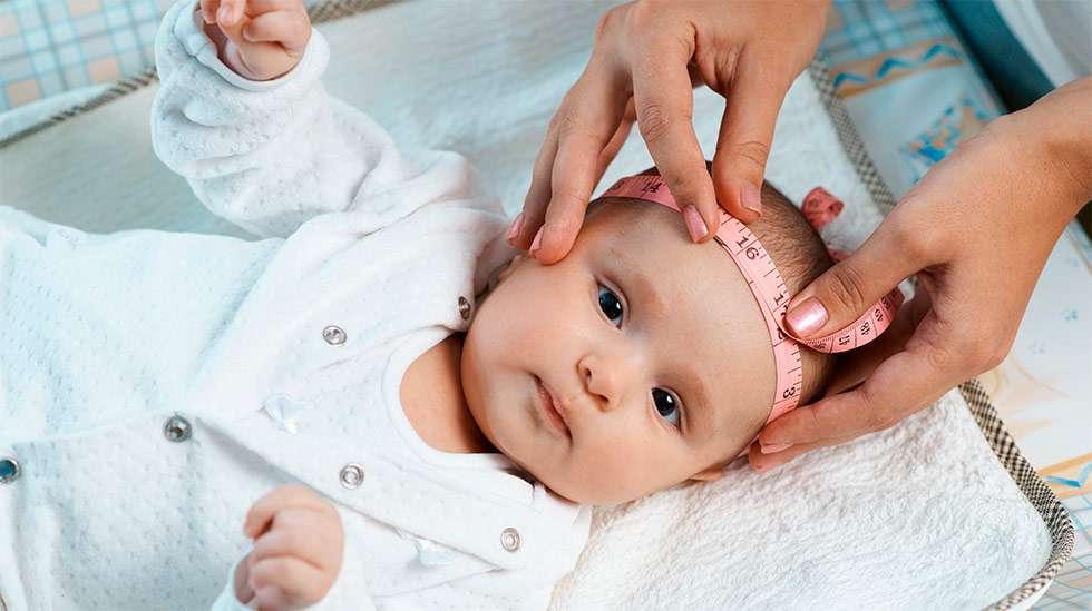 Neuvolan seulassa pienipäisyys ei tarkoita mikrokefaliaa. (Kuva: Shutterstock)