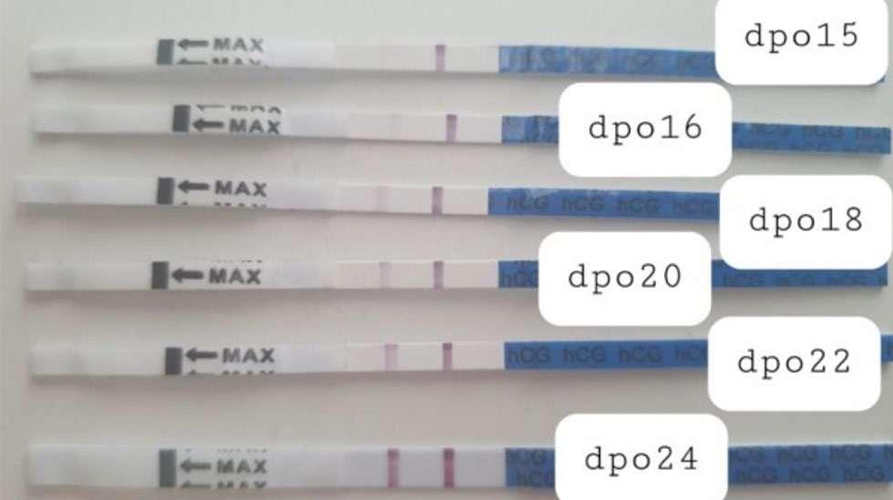 Tässä esimerkki vahvistuvasta positiivisesta tuloksesta raskaustestissä, kaikki liuskat kuuluvat saman testin tehneelle naiselle. Kuva: VAU.fi foorumi