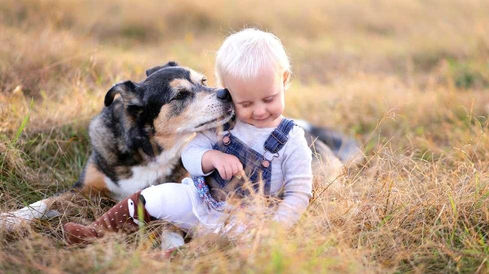 Yhteiselossa lemmikin kanssa on hyvät puolensa, mutta monet äidit myös tunnustavat, että se on ajoittain melko rasittavaa. Kuva: iStock