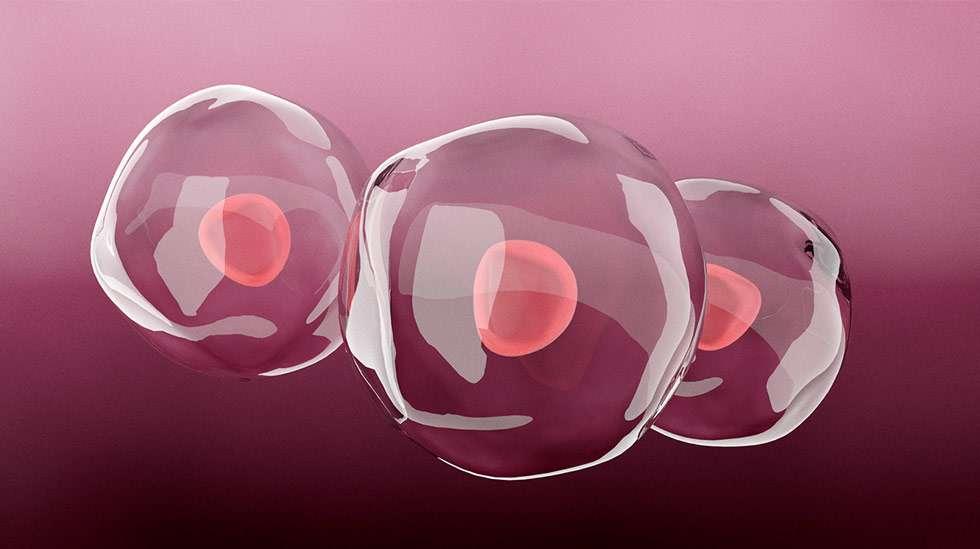 Munasolujen kypsyttämiseen käytetään lääkkeitä, jotka stimuloivat munasarjat tuottamaan useita munasoluja yhden kierron aikana. Kuva: iStock